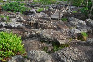 schalenförmiger Stein. der pa hin ngam nationalpark in chaiyaphum, thailand foto