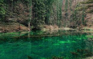 Atemberaubender Blick auf einen klaren See, umgeben von wunderschönen Bäumen foto