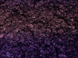 lila erde textur foto