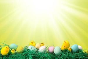 Osterfeiertagsbild mit Küken Eiern und Gras foto