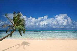 perfekter strand auf hawaii foto