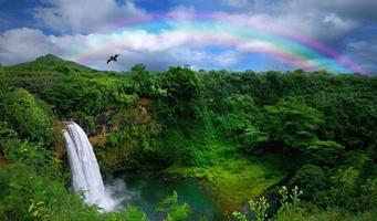 Blick von oben auf einen wunderschönen Wasserfall in Hawaii foto