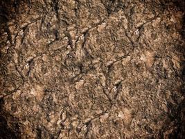 dunkle Steinstruktur foto