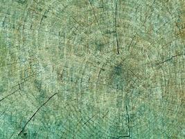 blaugrüne Holzstruktur foto