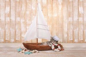 süßes Kätzchen in einem Segelboot mit Ozeanmotiv foto