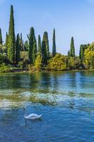Gardasee und die Schönheit von Punta San Vigilio. foto
