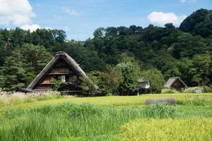Blick auf eine ländliche Gegend in Japan. traditionelles holzhaus in shirakawa go, japan foto