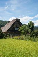 Blick auf ein traditionelles Holzhaus und Feld herum. shirakawa gehen, japan foto