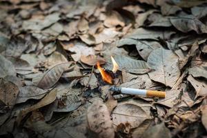 Nahaufnahme Zigarettenstummel, die achtlos nicht geraucht wurden, werden in trockenes Gras auf dem Boden geworfen und verursachen einen gefährlichen Waldbrand, ökologische Cotostrophie durch menschliches Verschulden-Konzept foto