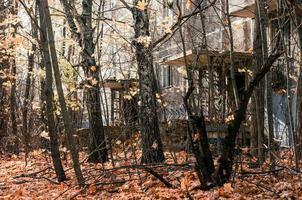 Prypjat, Ukraine, 2021 - verlassenes Haus zwischen den Bäumen in der Stadt Tschernobyl foto