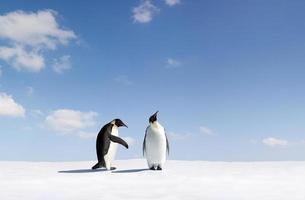 Ein Pinguin lehnt die Geste eines anderen Pinguins ab foto