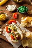 hausgemachter Hot Dog im Chicago-Stil foto