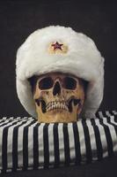 Schädel mit weißer russischer Uschanka foto