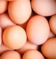 abstrakter Eierhintergrund