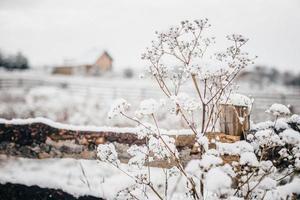Winter in einem Dorf foto
