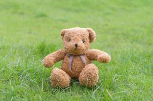 braune Farbe des Teddybären, die auf Gras sitzt foto