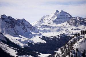 kastanienbraune Glocken im Winter foto