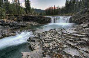 Schaf Fluss fällt Alberta foto