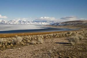 Antilopeninsel, Salzseestadt, Utah foto