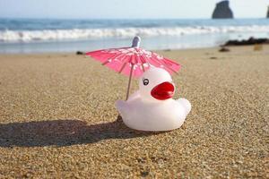 rosa Sonnenschirm und Ente