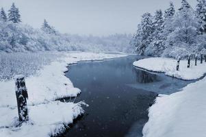 Enten auf dem gefrorenen Teich foto