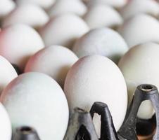 gesalzenes Ei oder konserviertes Ei foto