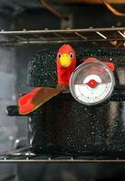 Truthahn im Röster mit Fleischthermometer foto