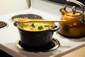 Hühnernudelsuppe im holländischen Ofen