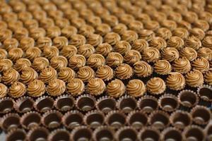 Schokoladenpralinen gefüllt mit Nougatcreme foto
