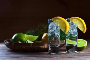 Gin mit Zitrone