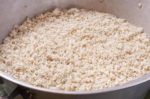 gemahlener Mais für Tamales