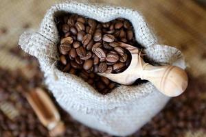 Kaffee, Kaffeebohnen foto