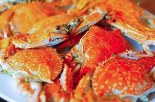 gebackene Krabbe foto