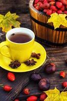 Tee mit Früchten von Hunderose foto