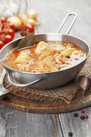 Suppe mit Kohl und Fleisch foto