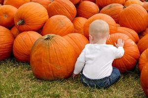 Baby in einem Kürbisbeet foto