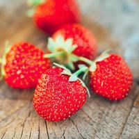Erdbeere. Erdbeeren. Bio-Beeren foto