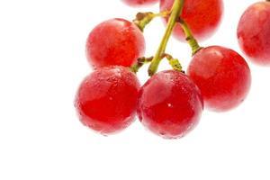 leckere Obsttrauben foto
