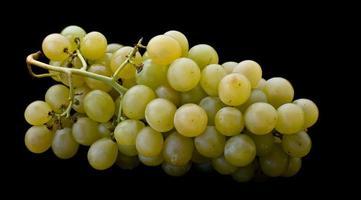 racimo de uvas con el gerno aislado en negro foto