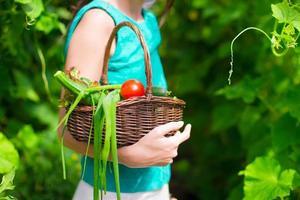 Nahaufnahmekorb der Ernte in den Händen der Frau foto