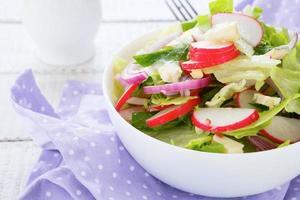 Frühlingssalat mit Radieschen und Käse foto