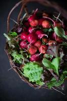 Bauernmarktkorb mit frischem Obst und Gemüse foto