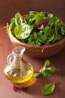 frische Salatblätter in Schüssel Spinat Mangold Ruccola