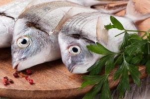frischer Fisch foto