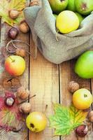 Herbstzusammensetzung der Früchte foto