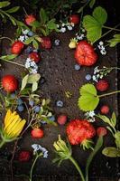 Rahmen aus Beeren und Blumen