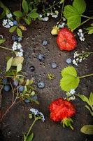 Rahmen aus Beeren und Blumen foto