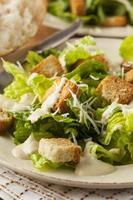 gesunder grüner Bio-Caesar-Salat
