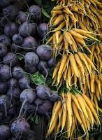 Bund Karotten und Rote Beete foto