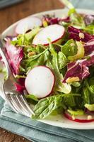 gesunder hausgemachter Kräutersalat foto